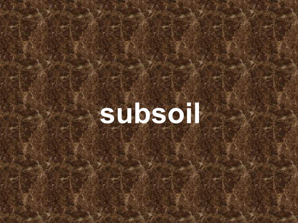 subsoil