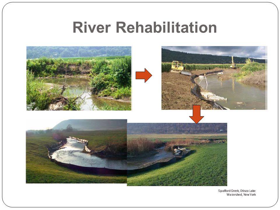 Spafford Creek, Otisco Lake Watershed, New York River Rehabilitation