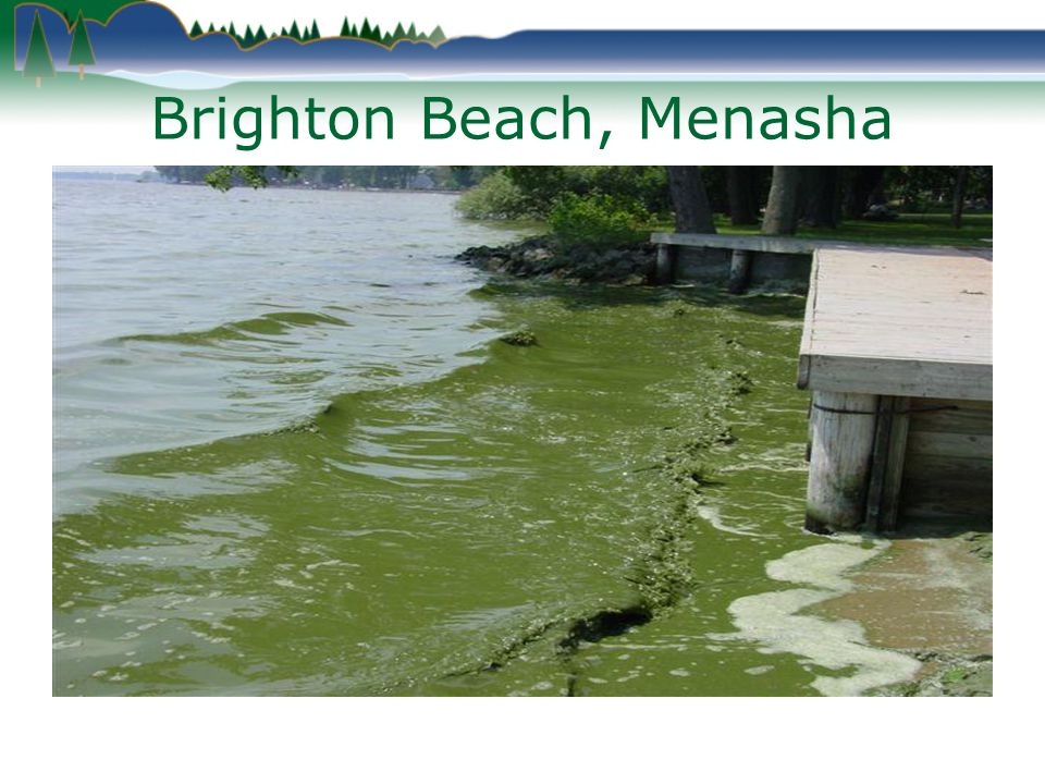Brighton Beach, Menasha