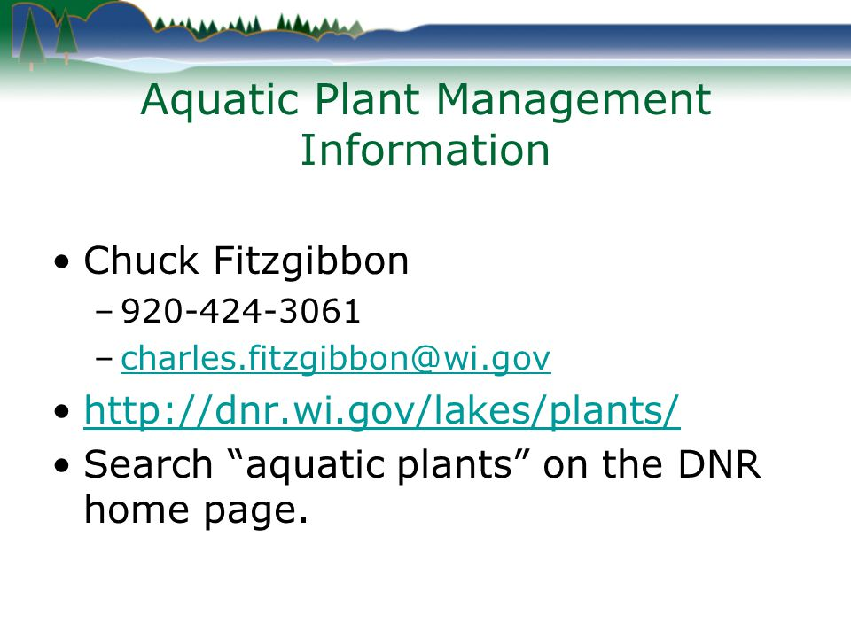 Aquatic Plant Management Information Chuck Fitzgibbon –920-424-3061 –charles.fitzgibbon@wi.govcharles.fitzgibbon@wi.gov http://dnr.wi.gov/lakes/plants/ Search aquatic plants on the DNR home page.
