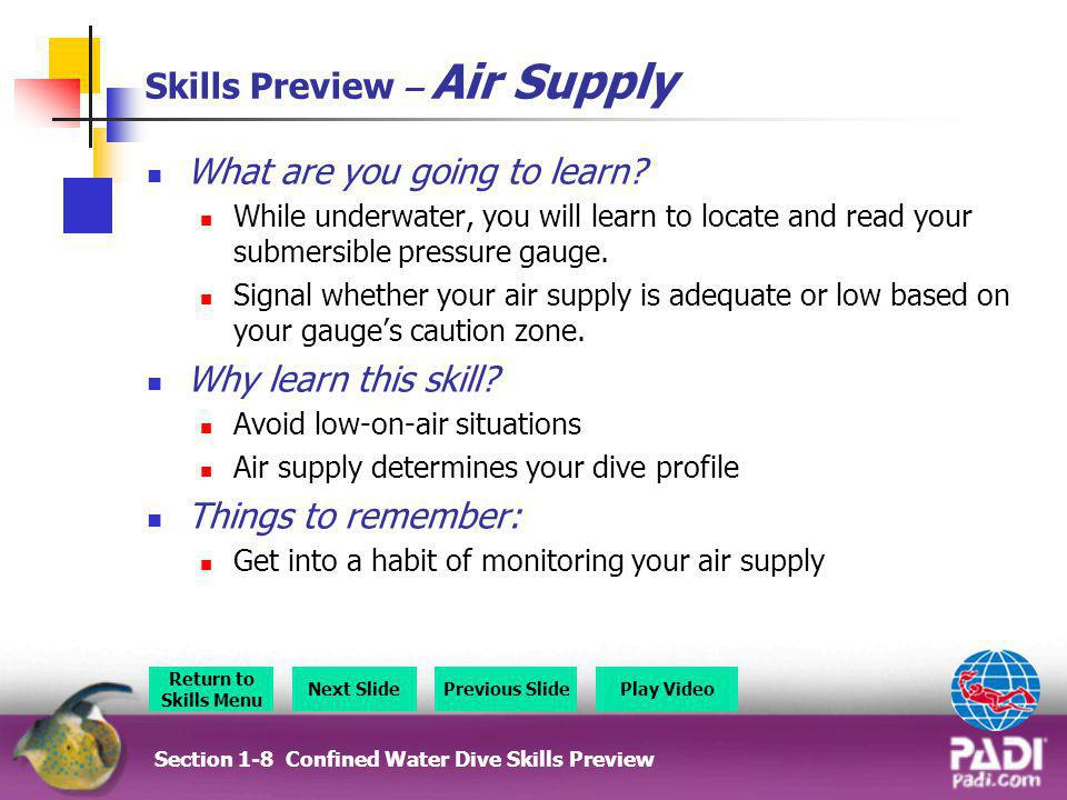 Skills Preview – Snorkel Ascents What are you going to learn.