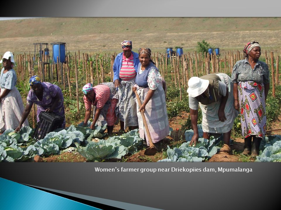 Womens farmer group near Driekopiies dam, Mpumalanga