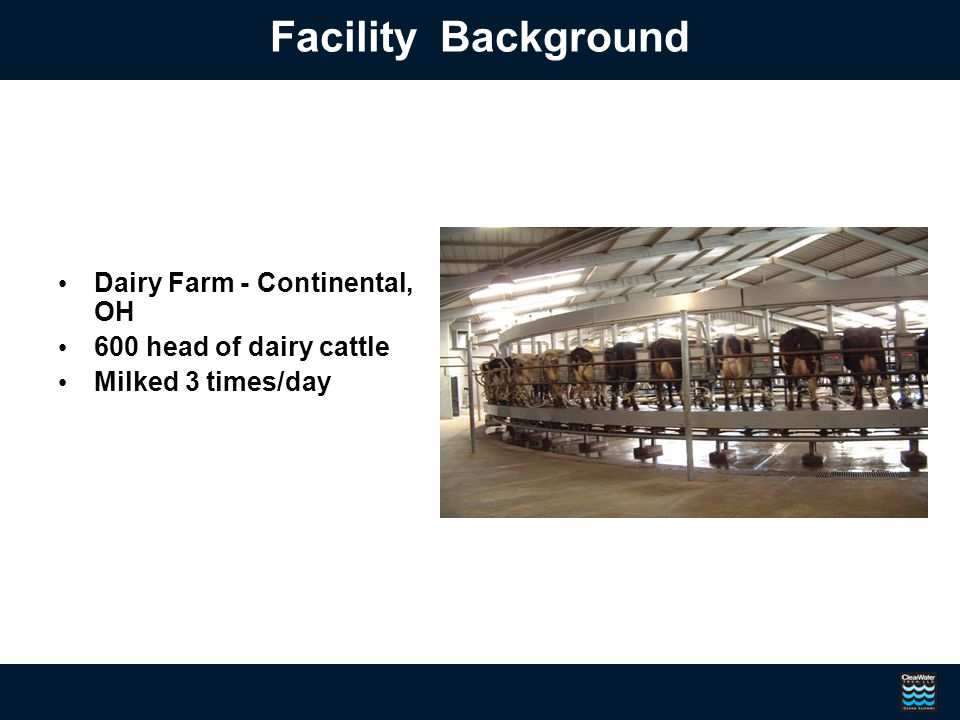 Dairy Farm - Continental, OH 600 head of dairy cattle Milked 3 times/day Facility Background