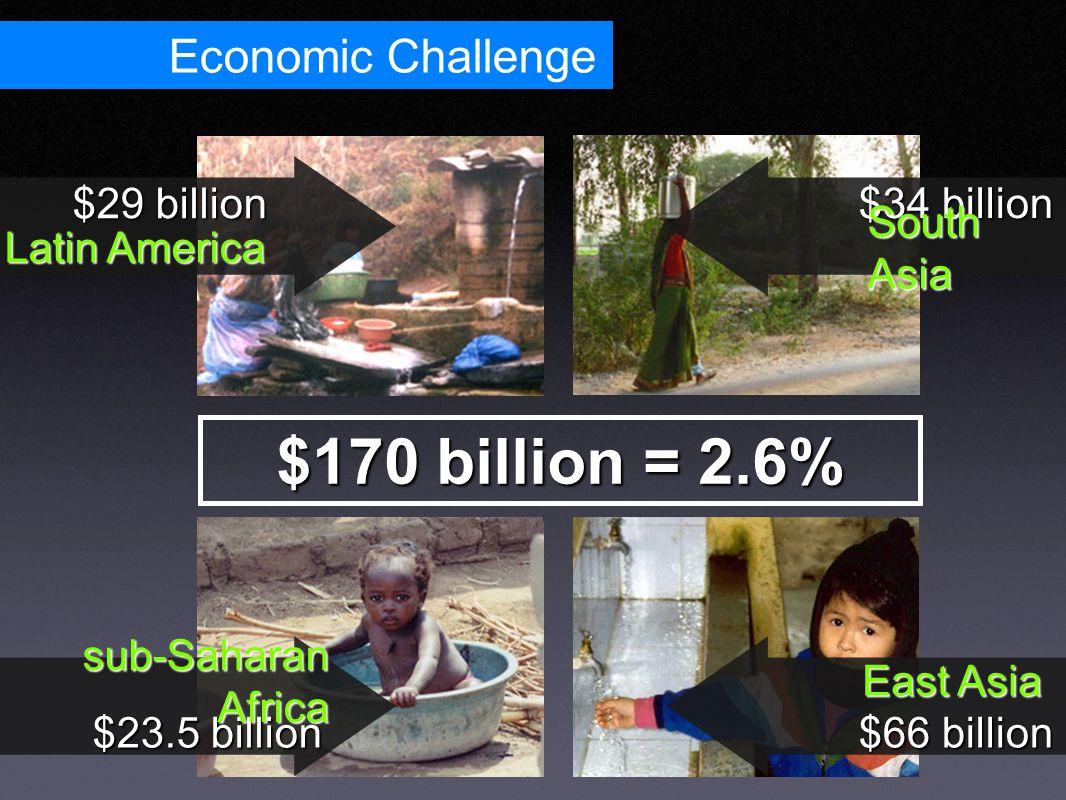 Economic Challenge $170 billion = 2.6% $23.5 billion $29 billion sub-Saharan Africa Latin America $34 billion $66 billion South Asia East Asia