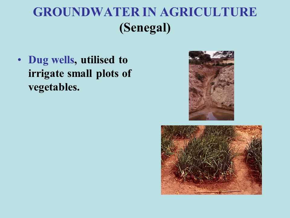 ACTIONS TO MITIGATE IMPACTS IN AGRICULTURE (2/6) Rain water harvesting from roof-top of greenhouses and farmhouses.