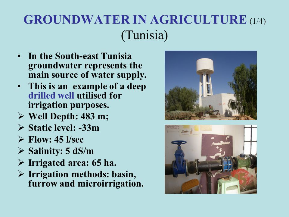 GROUNDWATER IN AGRICULTURE (5/6) (Egypt)) There are two main problems facing the people and farmers in Siwa: The drainage problem because there is no outlet to allow water to drain outside-the basin and the up-raise of the water level in the area due to the water accumulation with the water logging risk.