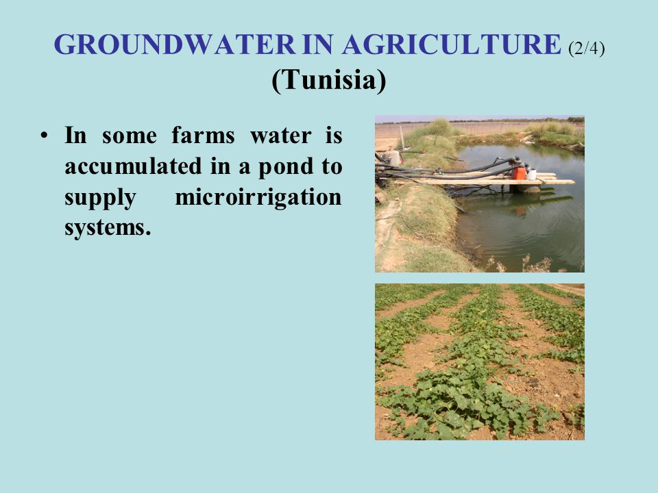 GROUNDWATER IN AGRICULTURE (6/6) (Egypt) Results of Salinity and Water logging impacts.