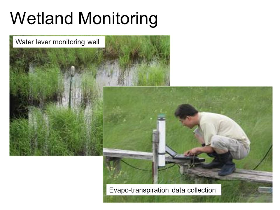 11 Wetland Monitoring Water lever monitoring well Evapo-transpiration data collection
