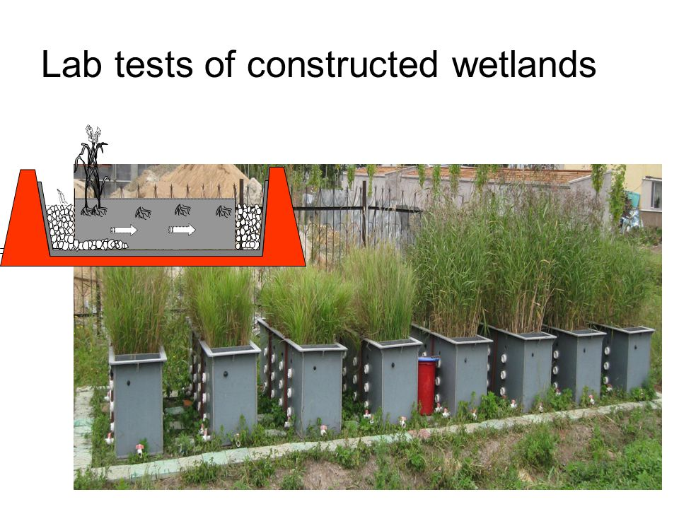 22 Lab tests of constructed wetlands