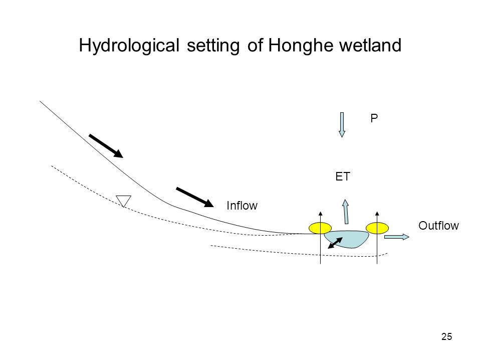 25 Hydrological setting of Honghe wetland ET P Inflow Outflow