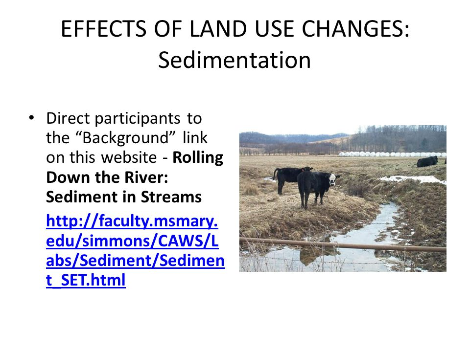 EFFECTS OF LAND USE CHANGES: Sedimentation Direct participants to the Background link on this website - Rolling Down the River: Sediment in Streams ht