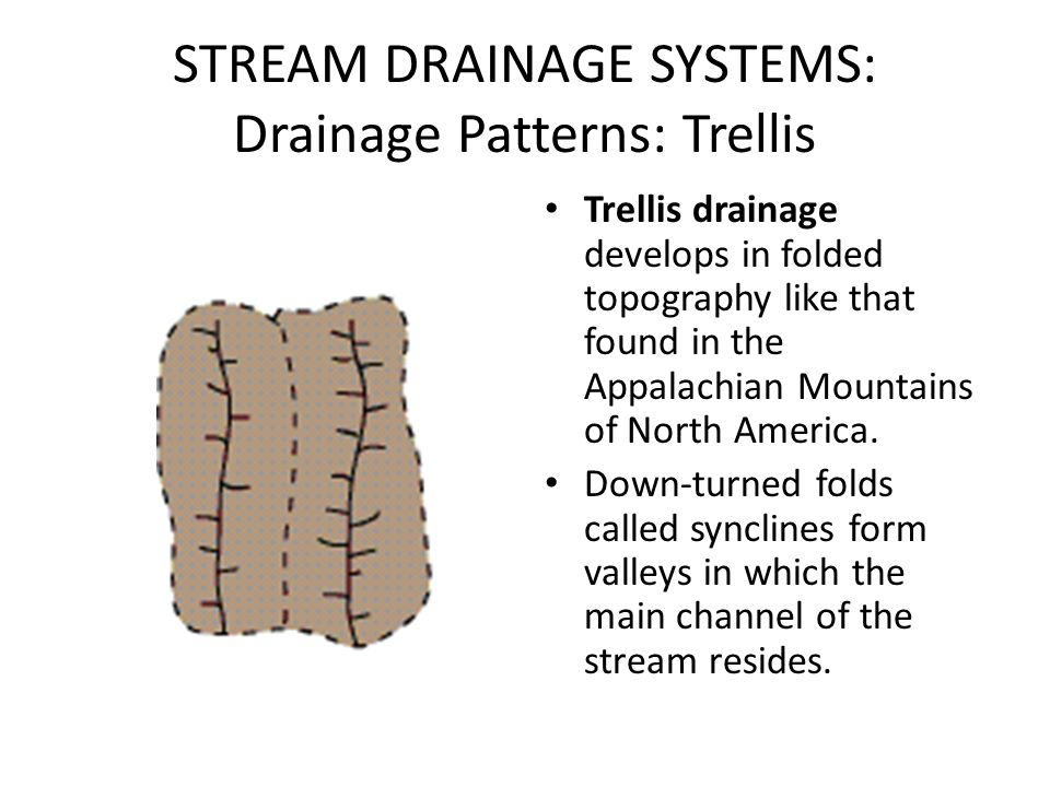 STREAM DRAINAGE SYSTEMS: Drainage Patterns: Trellis Trellis drainage develops in folded topography like that found in the Appalachian Mountains of Nor