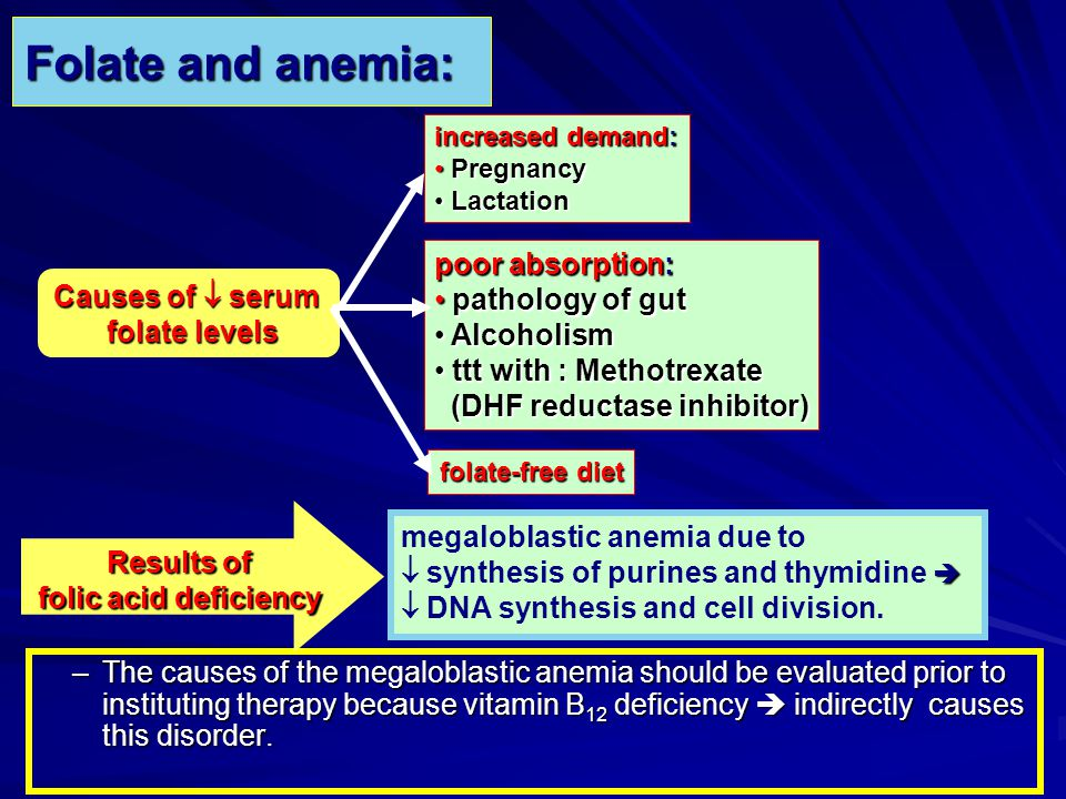 Folate and anemia: –The causes of the megaloblastic anemia should be evaluated prior to instituting therapy because vitamin B 12 deficiency indirectly