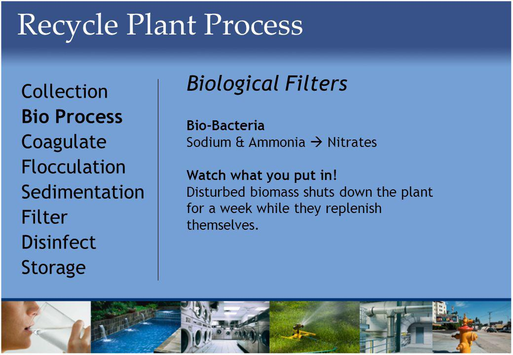 Recycle Plant Process Collection Bio Process Coagulate Flocculation Sedimentation Filter Disinfect Storage Biological Filters Bio-Bacteria Sodium & Ammonia Nitrates Watch what you put in.