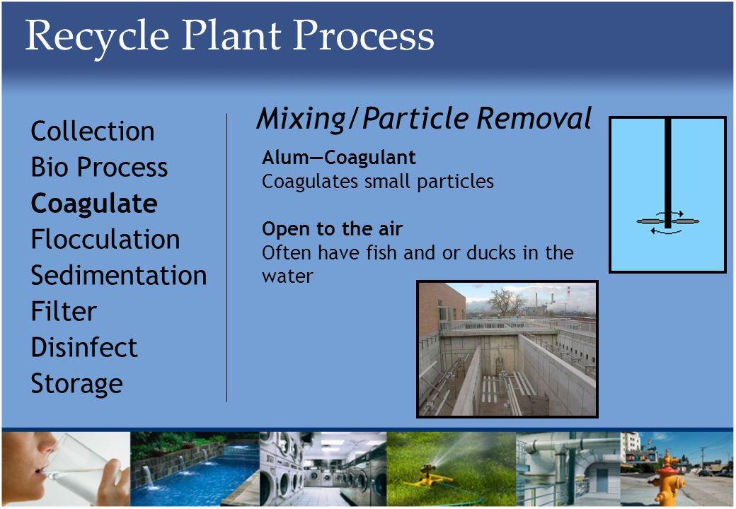 Recycle Plant Process Collection Bio Process Coagulate Flocculation Sedimentation Filter Disinfect Storage Mixing/Particle Removal AlumCoagulant Coagulates small particles Open to the air Often have fish and or ducks in the water