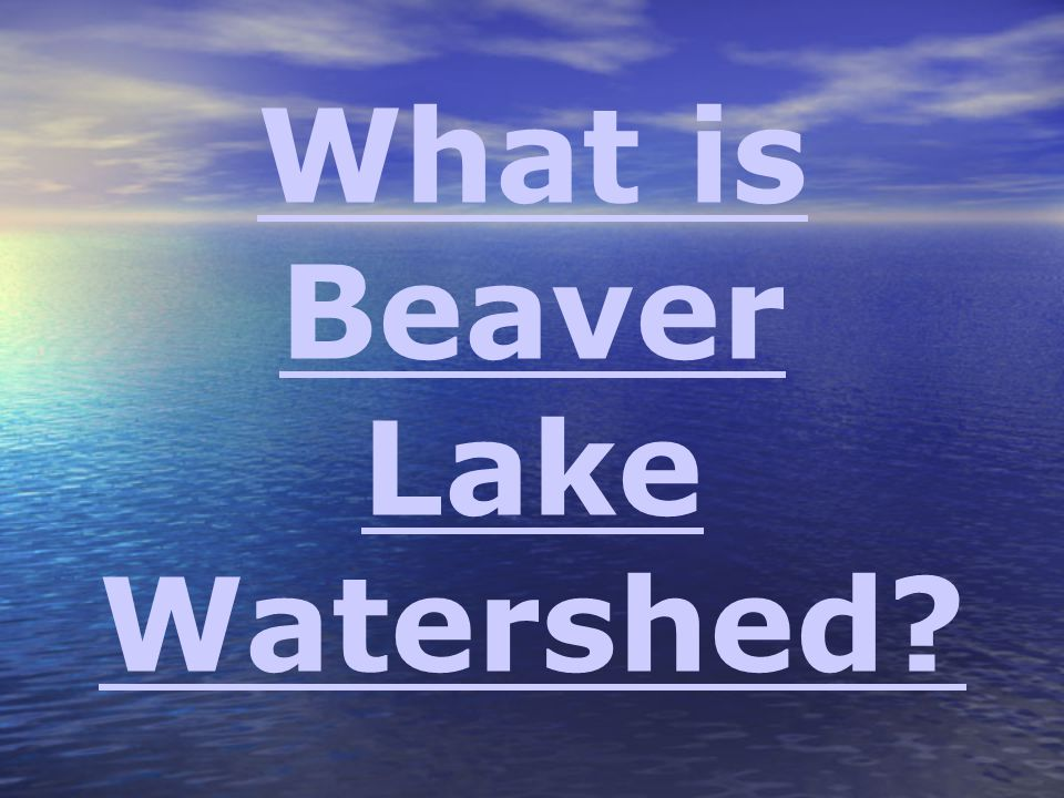 What is Beaver Lake Watershed