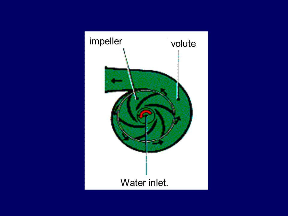 Water inlet. volute impeller