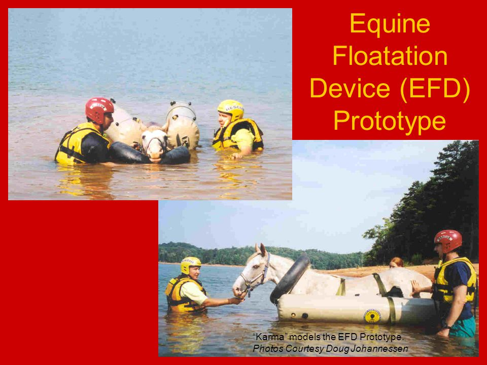 Equine Floatation Device (EFD) Prototype Karma models the EFD Prototype.