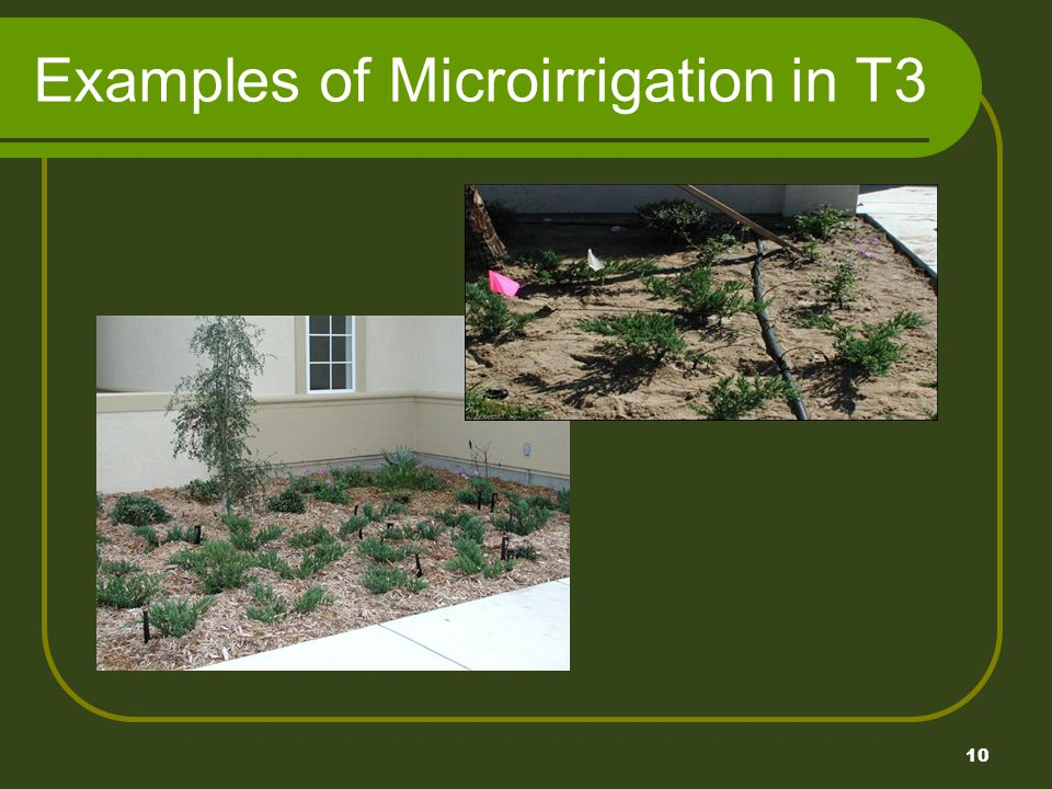 10 Examples of Microirrigation in T3