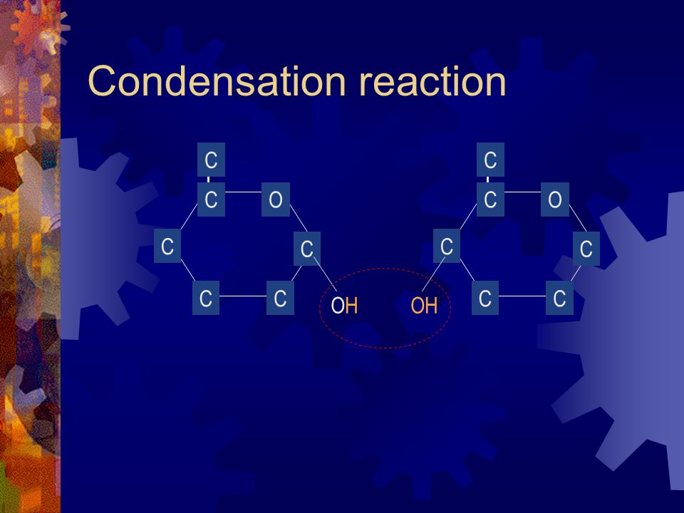 Condensation reaction O CC C C C CO CC C C C C OHOHOH