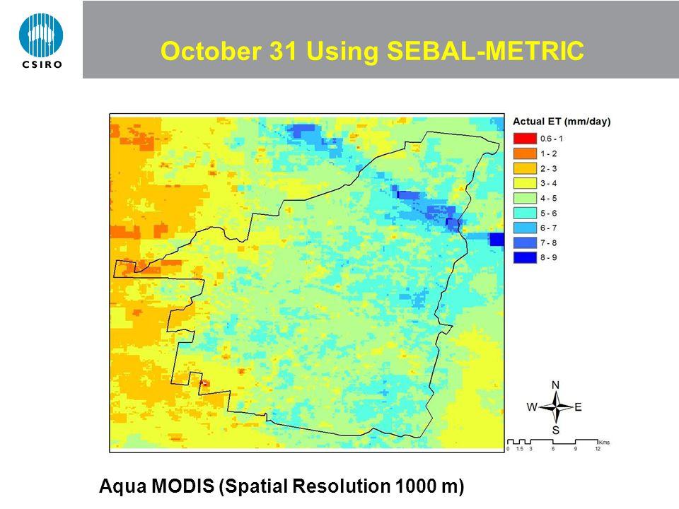 October 31 Using SEBAL-METRIC Aqua MODIS (Spatial Resolution 1000 m)