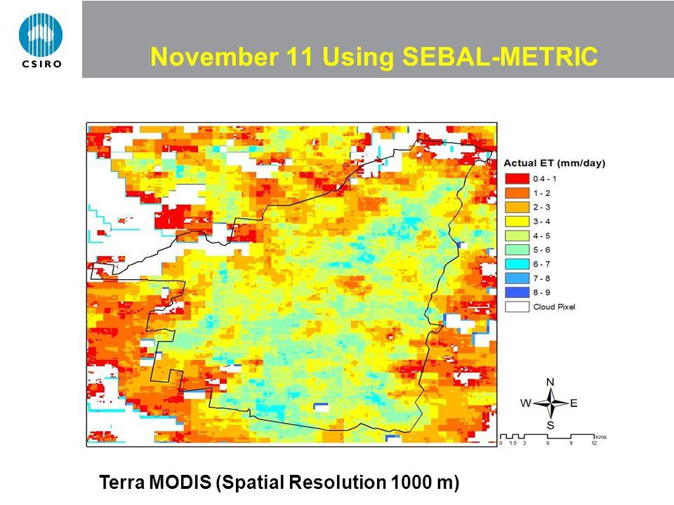 November 11 Using SEBAL-METRIC Terra MODIS (Spatial Resolution 1000 m)