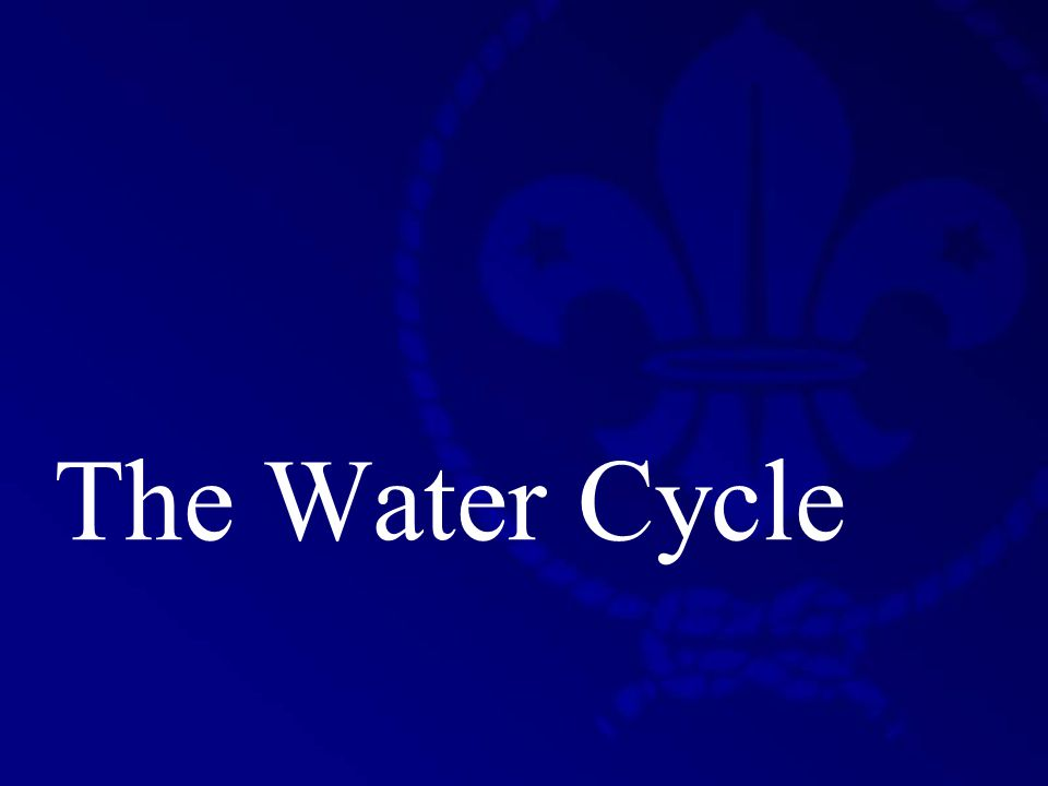 Therese Camilleri St. Michael School Scout Group The Water Cycle