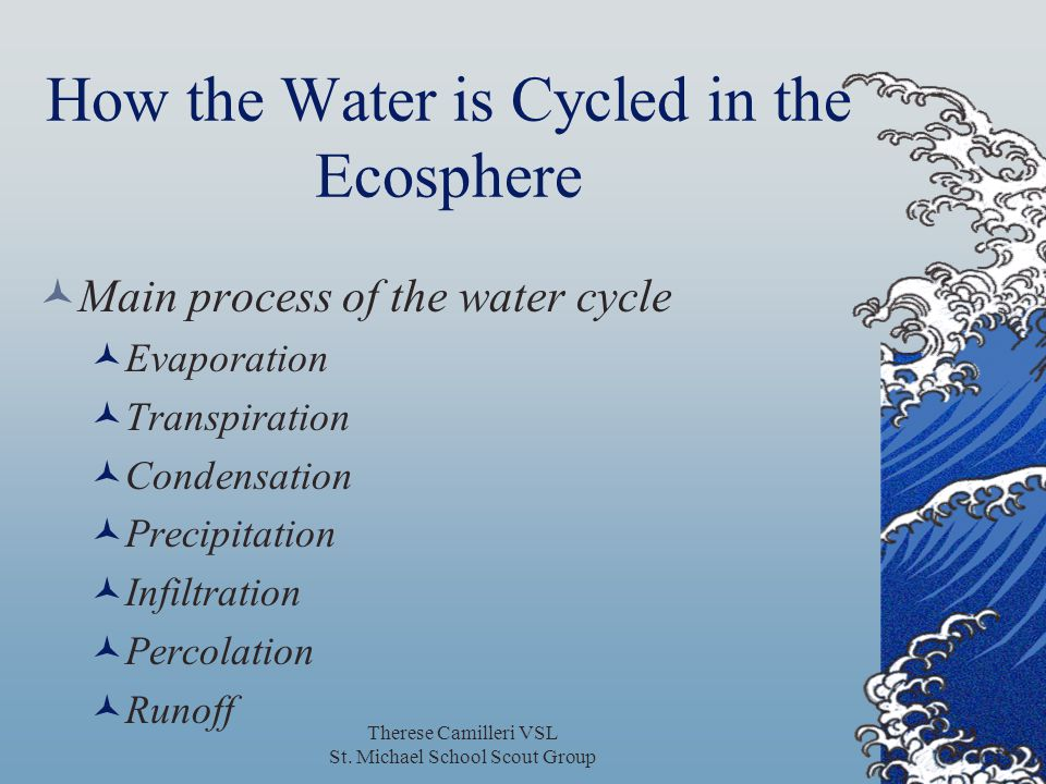 Therese Camilleri VSL St. Michael School Scout Group How the Water is Cycled in the Ecosphere Main process of the water cycle Evaporation Transpiratio