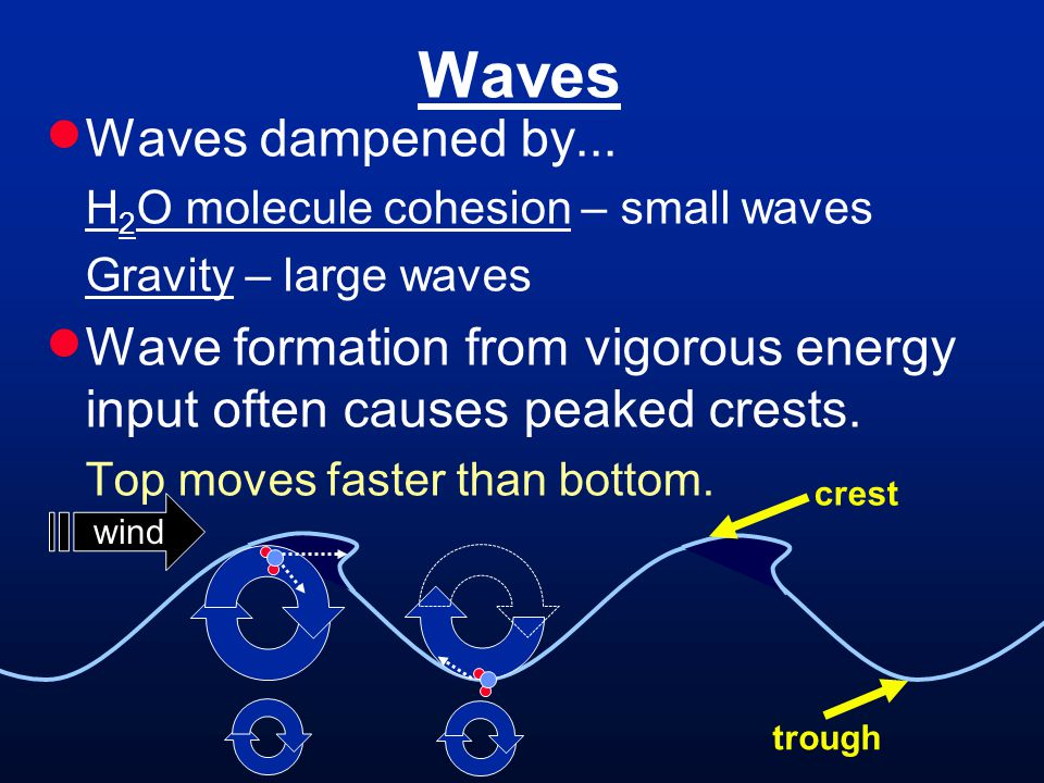 Waves Waves dampened by... H 2 O molecule cohesion – small waves Gravity – large waves Wave formation from vigorous energy input often causes peaked c