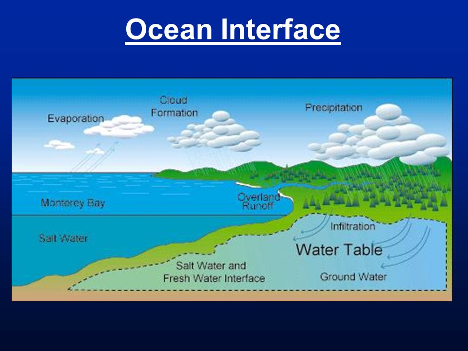 Ocean Interface