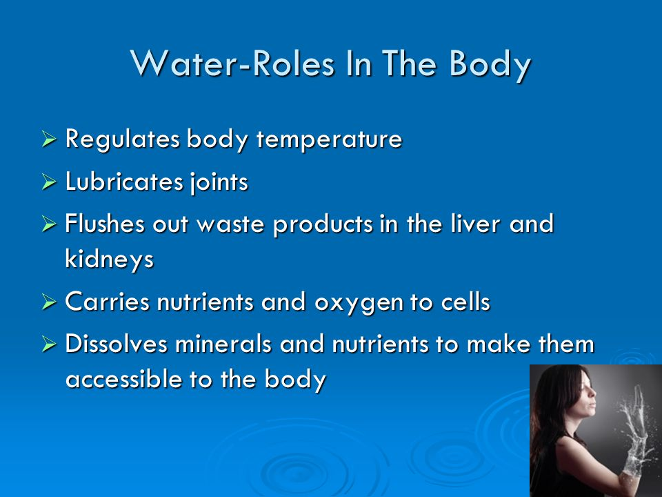 Water-Roles In The Body (Contd) Protects body organs and tissues Protects body organs and tissues Moistens tissues found in mouth, eyes and nose Moistens tissues found in mouth, eyes and nose Helps prevent constipation Helps prevent constipation