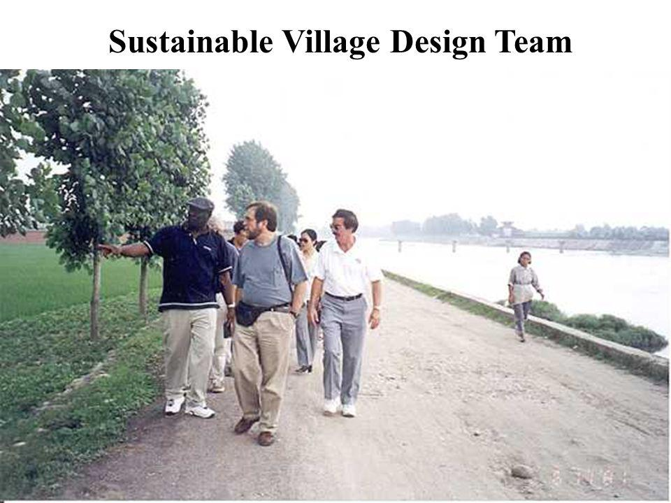 The goals of design of the Model Sustainable Village are: to promote economic growth to protect the environment to foster a strong community to improve the quality of life