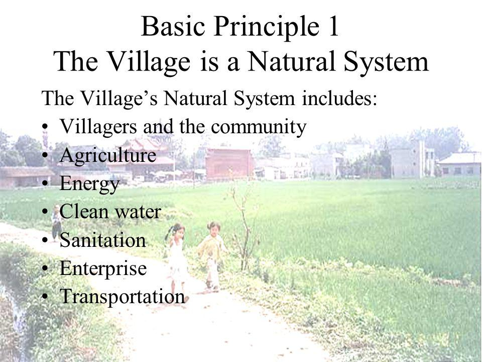 Features of the sustainable village: Sustainable Agriculture The agricultural productivity has been optimized to produce a sustainable economy for the village.