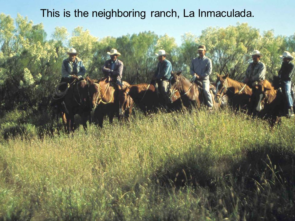 This is the neighboring ranch, La Inmaculada.