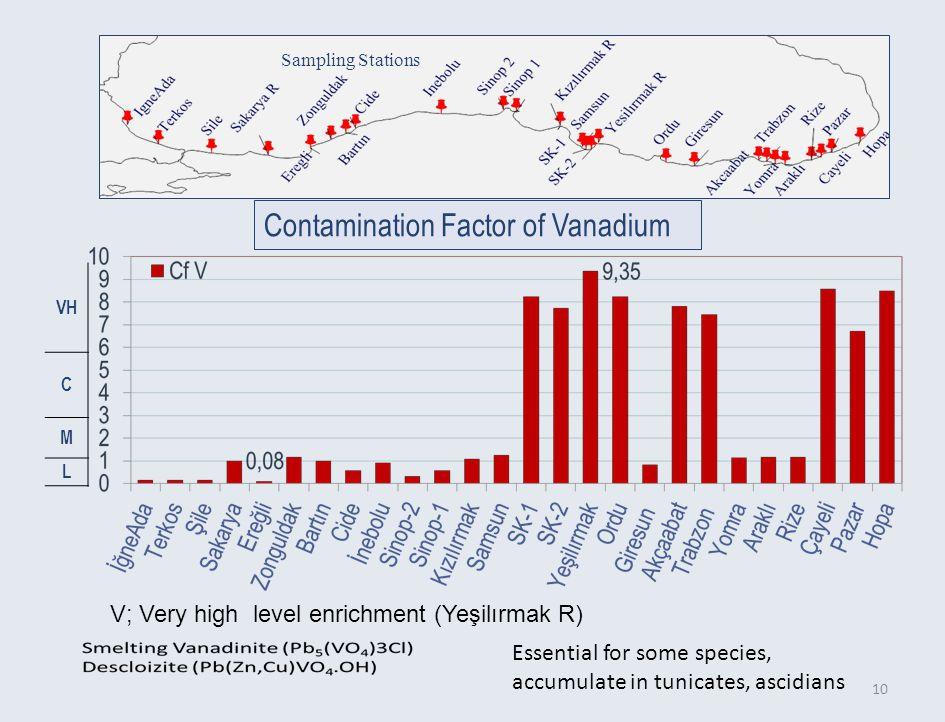 C M L 10 Contamination Factor of Vanadium Sampling Stations Essential for some species, accumulate in tunicates, ascidians V; Very high level enrichment (Yeşilırmak R)