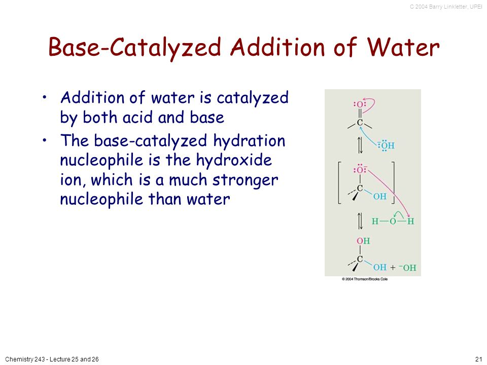 C 2004 Barry Linkletter, UPEI Chemistry Lecture 25 and 2621 Base-Catalyzed Addition of Water Addition of water is catalyzed by both acid and base The base-catalyzed hydration nucleophile is the hydroxide ion, which is a much stronger nucleophile than water