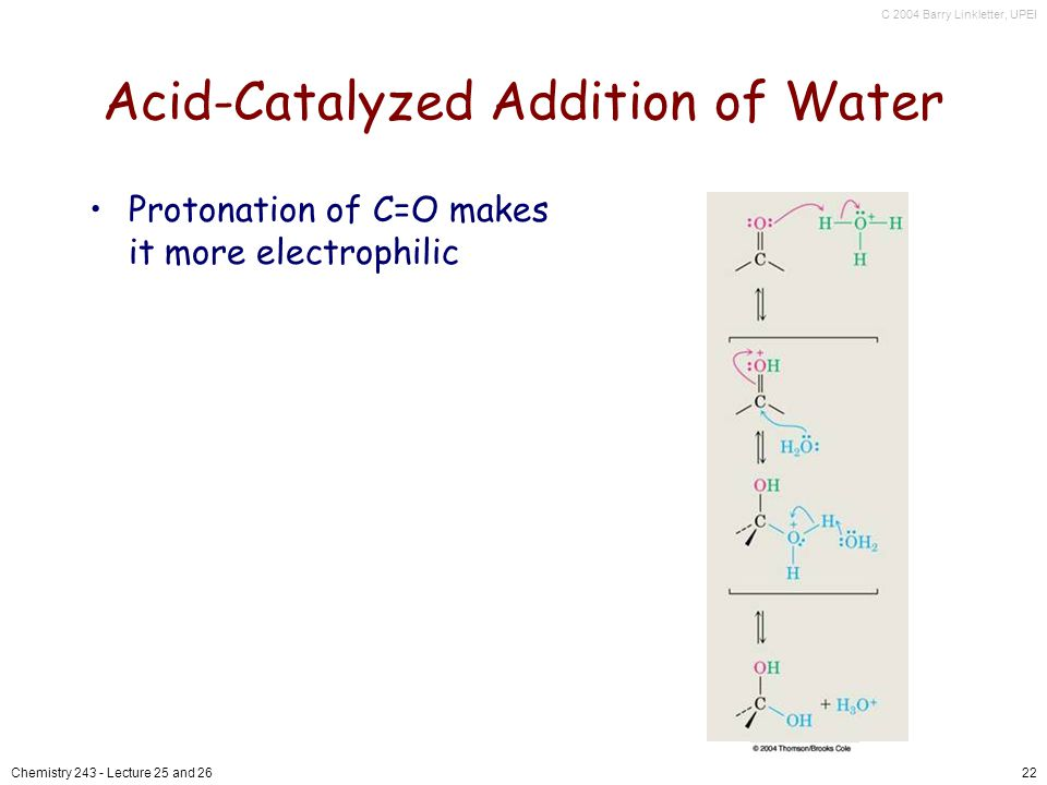 C 2004 Barry Linkletter, UPEI Chemistry Lecture 25 and 2622 Acid-Catalyzed Addition of Water Protonation of C=O makes it more electrophilic