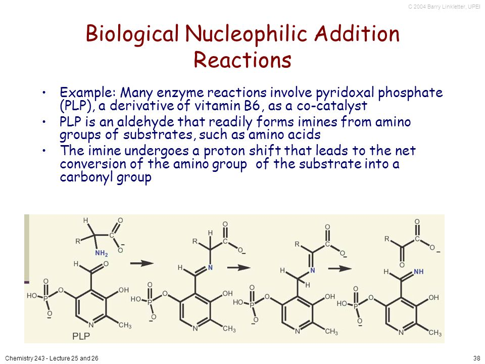 C 2004 Barry Linkletter, UPEI Chemistry Lecture 25 and 2638 Biological Nucleophilic Addition Reactions Example: Many enzyme reactions involve pyridoxal phosphate (PLP), a derivative of vitamin B6, as a co-catalyst PLP is an aldehyde that readily forms imines from amino groups of substrates, such as amino acids The imine undergoes a proton shift that leads to the net conversion of the amino group of the substrate into a carbonyl group
