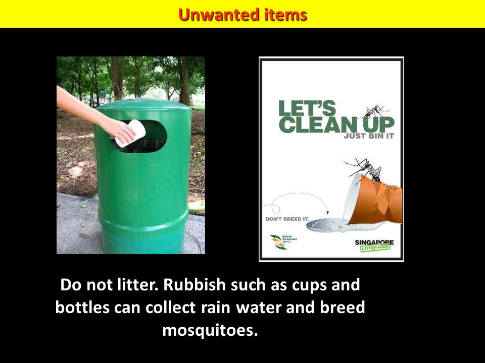 Unwanted items Do not litter. Rubbish such as cups and bottles can collect rain water and breed mosquitoes.