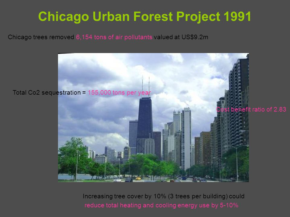 Chicago Urban Forest Project 1991 Chicago trees removed 6,154 tons of air pollutants valued at US$9.2m Total Co2 sequestration = 155,000 tons per year Increasing tree cover by 10% (3 trees per building) could reduce total heating and cooling energy use by 5-10% Cost benefit ratio of 2.83
