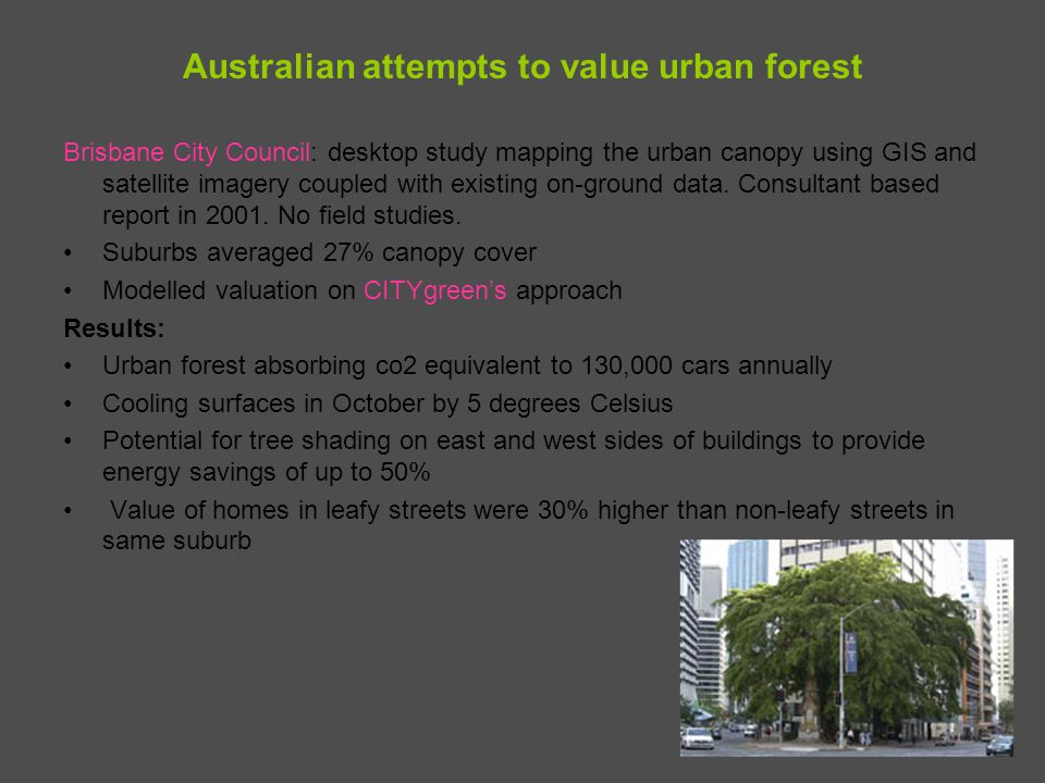 Australian attempts to value urban forest Brisbane City Council: desktop study mapping the urban canopy using GIS and satellite imagery coupled with e