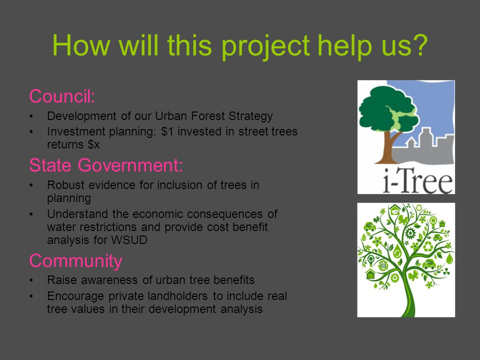 How will this project help us? Council: Development of our Urban Forest Strategy Investment planning: $1 invested in street trees returns $x State Gov