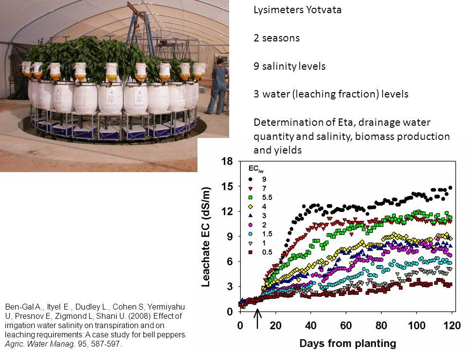 Lysimeters Yotvata 2 seasons 9 salinity levels 3 water (leaching fraction) levels Determination of Eta, drainage water quantity and salinity, biomass