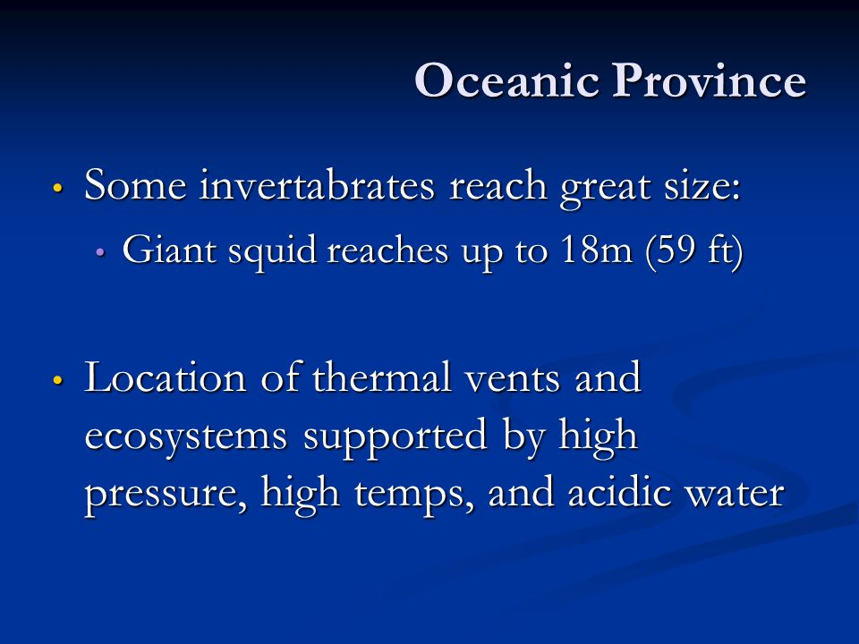 Oceanic Province Some invertabrates reach great size: Some invertabrates reach great size: Giant squid reaches up to 18m (59 ft) Giant squid reaches u