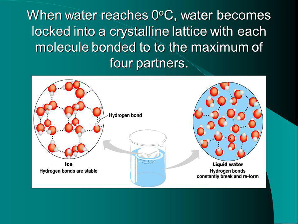 When water reaches 0 o C, water becomes locked into a crystalline lattice with each molecule bonded to to the maximum of four partners.