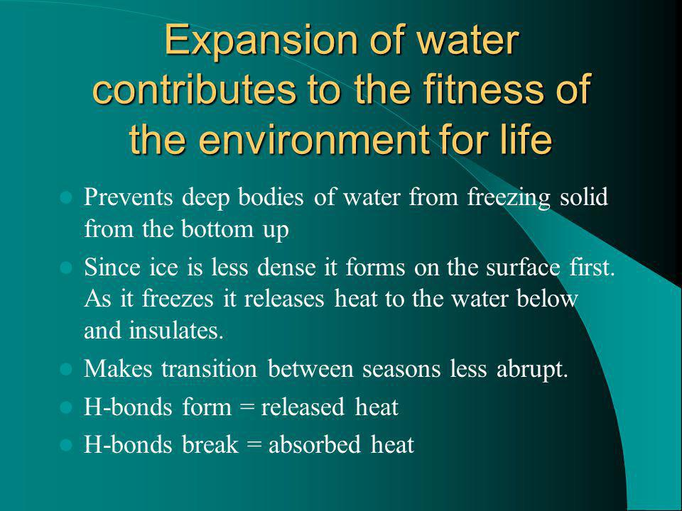 Expansion of water contributes to the fitness of the environment for life Prevents deep bodies of water from freezing solid from the bottom up Since ice is less dense it forms on the surface first.
