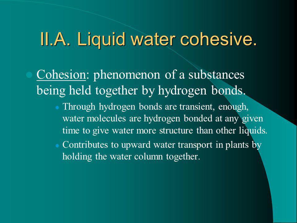 II.A. Liquid water cohesive.