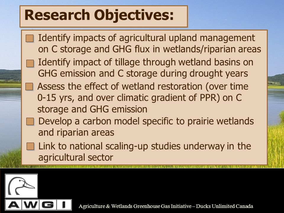 Research Objectives: Develop a carbon model specific to prairie wetlands and riparian areas Agriculture & Wetlands Greenhouse Gas Initiative – Ducks U