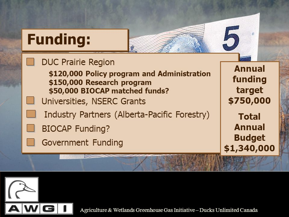 Funding: Annual funding target $750,000 Total Annual Budget $1,340,000 Universities, NSERC Grants Industry Partners (Alberta-Pacific Forestry) BIOCAP