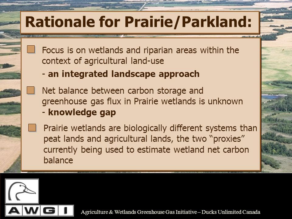 Research Objectives: Quantify carbon storage along wetland-riparian- upland transects across the PPR (including Boreal transition/Parkland zone) Quantify greenhouse gas flux (CO 2, CH 4, and N 2 O) along same transects Identify and measure key ecological drivers that control changes in C and GHG flux in wetland and riparian areas Agriculture & Wetlands Greenhouse Gas Initiative – Ducks Unlimited Canada Assess spatial and temporal variability of GHG fluxes in heterogeneous wetland zones and riparian areas